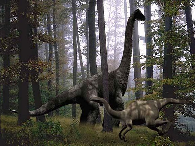 dinosaure2 dans fond ecran dinosaure